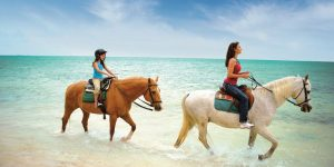 Tour Help guide to Bahamas Holiday Vacationers